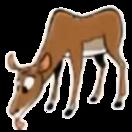 Impala hugo safari pc