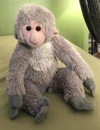 Yuki the Japanese Macaque