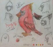 B&G Cardinal Anger