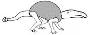 Doedicurnbill