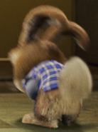 E.b.'s butt