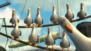 FN Seagulls