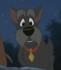 Jock in Lady and the Tramp 2 Scamp's Adventure.jpg