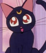 Luna (Sailor Moon TV Series)