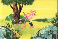 Pink-p2