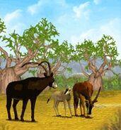 ZT-Sable Antelope