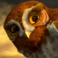 Gylfie (Legend of the Guardians - The Owls of Ga'Hoole)