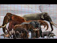 Mammoths To Elephants