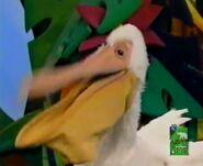 Muppet Pelican