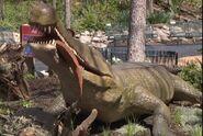 Saint Louis Zoo Sarchosuchus