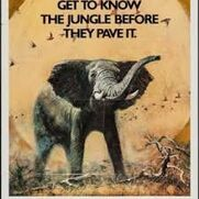 The African Elephant (1971)