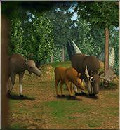 ZT-Moose