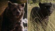 Baloo and Bagheera (2016)