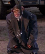 SMB Monkey