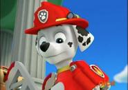 -Marshall-the-Dalmatian-paw-patrol-40125867-631-446