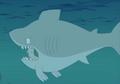 American Dad Shark