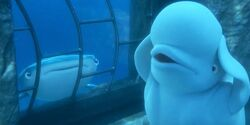 Finding Dory Bailey using his Echo Location.jpg