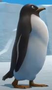 Gon Penguin