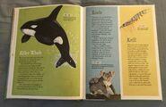 The Dictionary of Ordinary Extraordinary Animals (26)