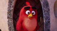 Angry-birds-disneyscreencaps.com-10323