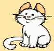 Cat wtpk