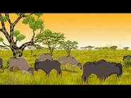 Kirikou Wildebeests