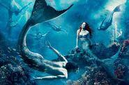 Merman and Mermaid (V2)
