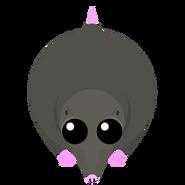Mopeio Mole