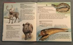 My First Book of Animals from A to Z (24).jpeg