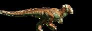 Pachycephalosaurus-detail-header