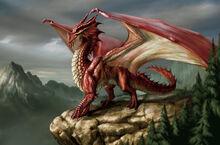 Red European Dragon.jpg