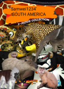 SW South America Poster