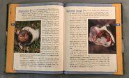 Scholastic Encyclopedia Of Animals (24)