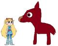 Star meets Alpaca