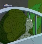 TWT Tortoise