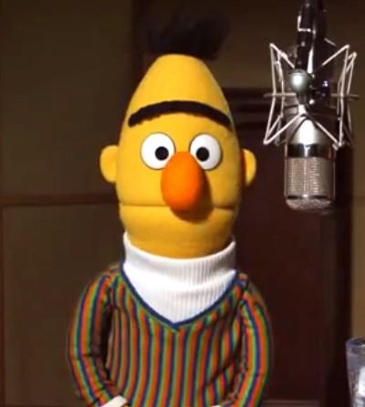 Bert Live! in New York City