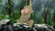 Monkey (1)