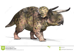 Nasutoceratops-dinosaur-was-lived-cretaceous-period-d-render-47976121.jpg