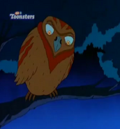 TWT African Owl