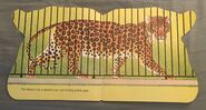 The Zoo Book (2)