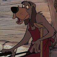 Otto the Dog