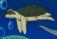 RGW Video Game Sea Turtle