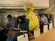 The Sesame Street cast take flight on an airplane to Hawaii