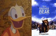 Donald Duck Likes Brother Bear
