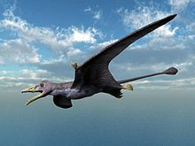Eudimorphodon NT small.jpg