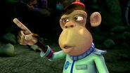 Mr. Nesmith the Chimpanzee