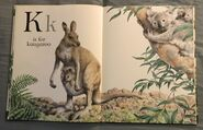 The A to Z Book of Wild Animals (10)
