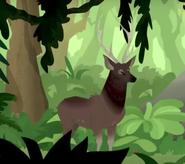 Wild Kratts Sambar Deer