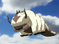 Appa the Flying Bison