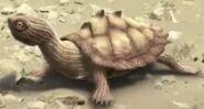 Dinosaur Revolution Map Turtle